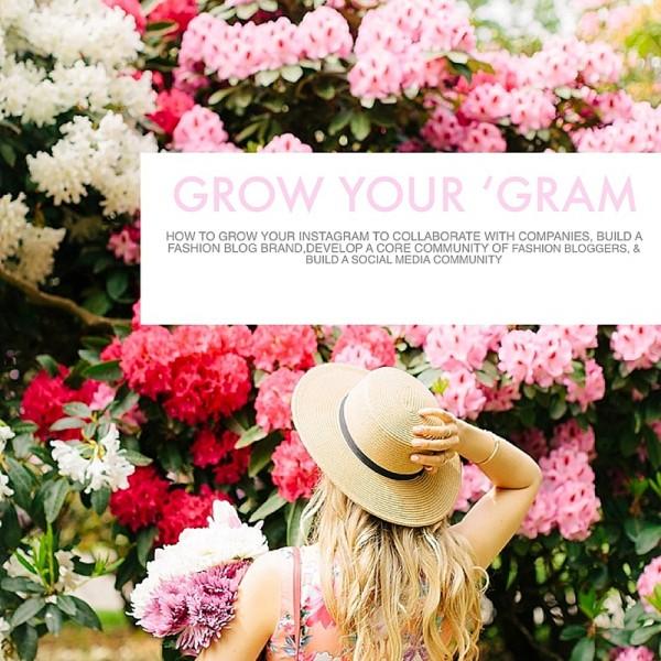 Grow Your Instagram, E-Course, blush and camo, fashion blogging