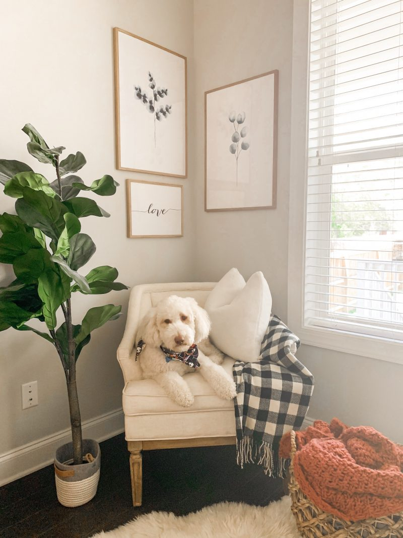 HOME PROJECT: A COZY READING CORNER